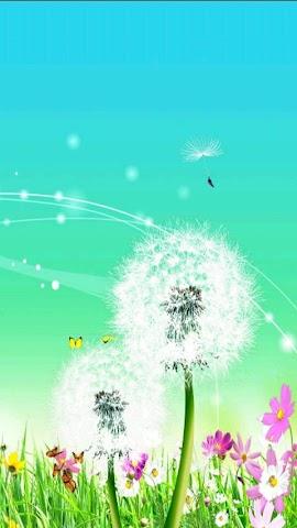 android Spring Dandelion Livewallpaper Screenshot 2
