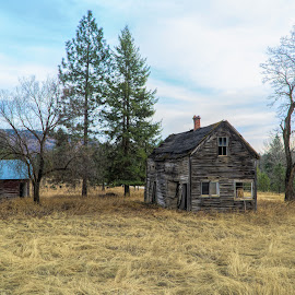 Homestead 2 by Earl Heister - Buildings & Architecture Decaying & Abandoned (  )