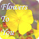 Flowers to You Download for PC Windows 10/8/7