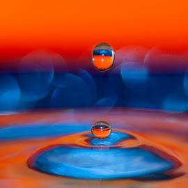 drops.. by Hale Yeşiloğlu - Abstract Water Drops & Splashes ( drop, drops, color, waterdrop, splash )