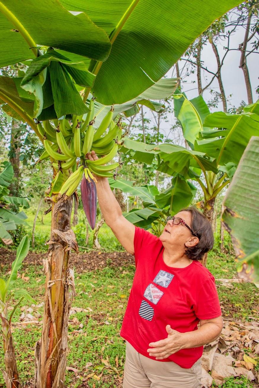 lokaal-eten-costa-rica