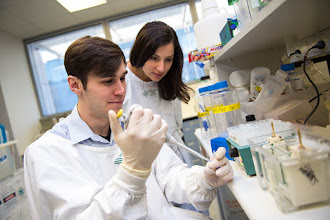 Photo: Mr Kyal Young, Honours student, with one of his supervisors, Dr Evelyn Tsantikos http://www.med.monash.edu.au/immunology/research/leukocyte-lab.html