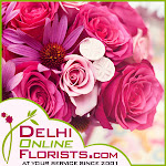 Order Online Gifts to Delhi at a Low Cost on the Same Day with Free Shipping