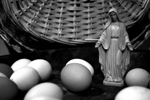 La madonnina delle uova di Icarus