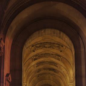 Way to Louvre by Pavel Laberko - Buildings & Architecture Public & Historical ( paris, louvre, columns, night, colours )