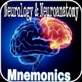 Neurology & Neuroanatomy Mnemonics