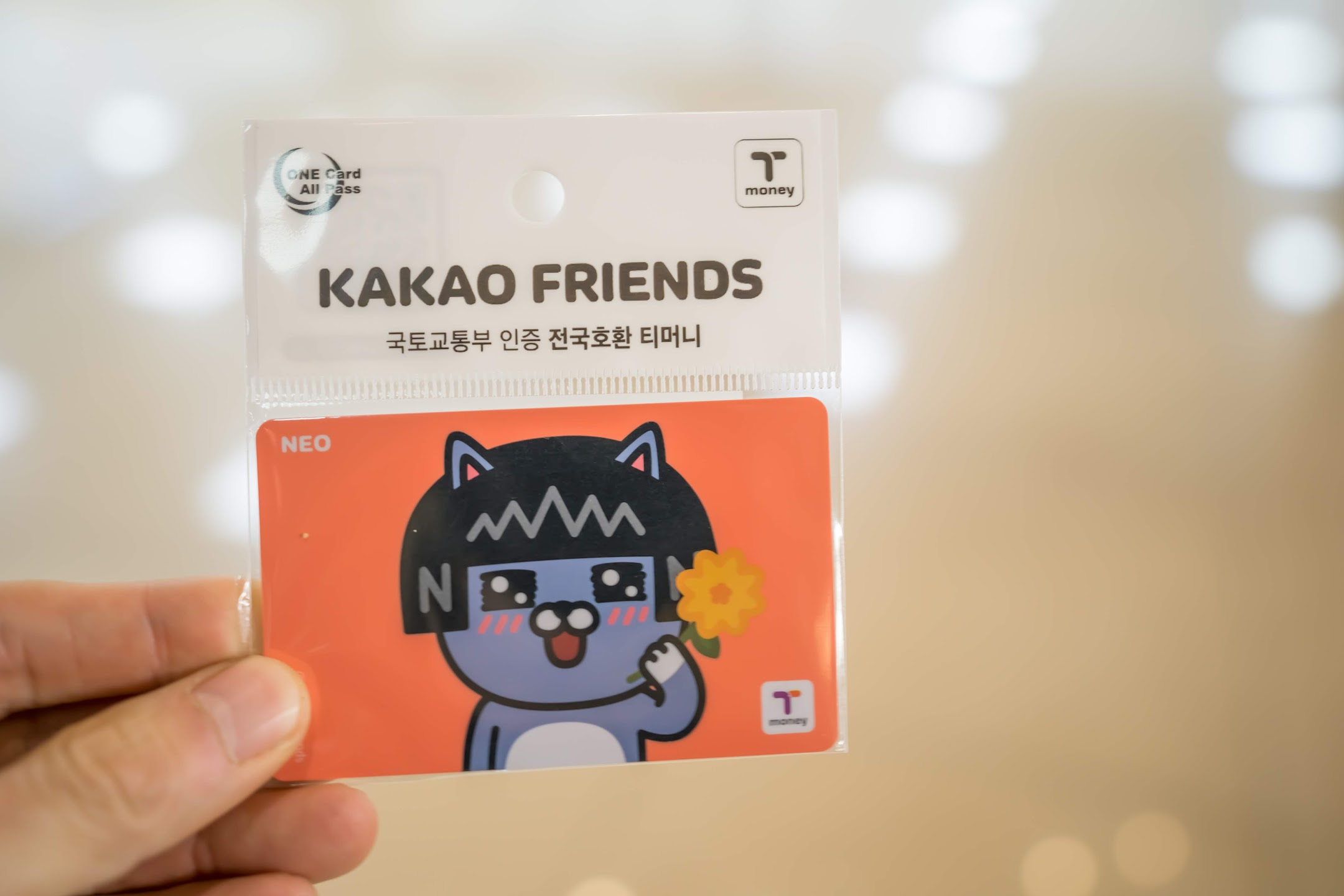 韓国 ソウル T-money KAKAO FRIENDS