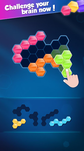 Block! Hexa Puzzleu2122 20.0903.09 screenshots 3
