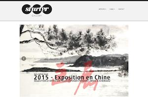 site web créé par starter gallery