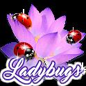 Ladybugs Picture Photo Frames icon