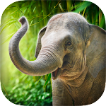 Real Talking Elephant Icon