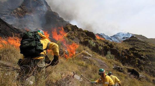 La Fiscalía vigilará a los 16 municipios que tienen más incendios forestales