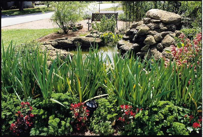 Oczko wodne w ogrodzie wykonane z folii