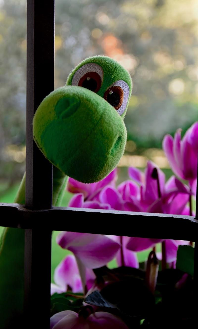 Ciao! Posso entrare? di utente cancellato