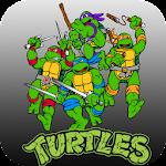 Ninja Turtle Arcade Icon