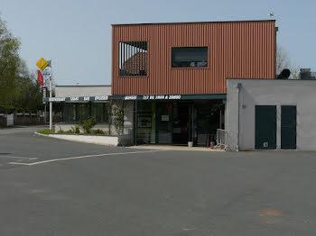 locaux professionels à Les Albres (12)