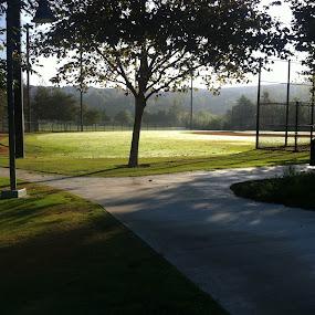 Baseball Field at Sunrise by Justin Kifer - City,  Street & Park  City Parks ( park, baseball field, grass, baseball, sunrise, sun )