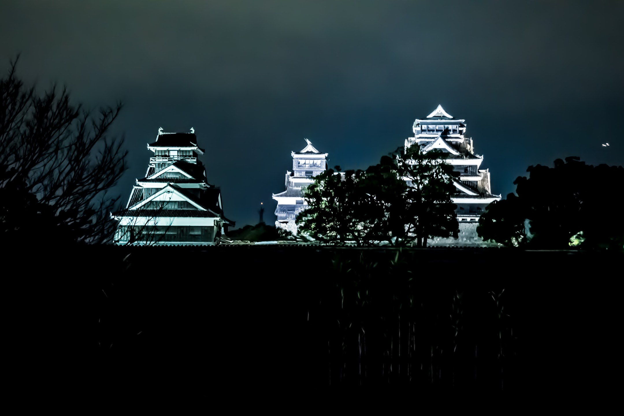 Kumamoto Castle light-up2