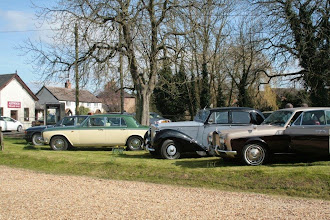 Photo: A gleaming line up at the Swan