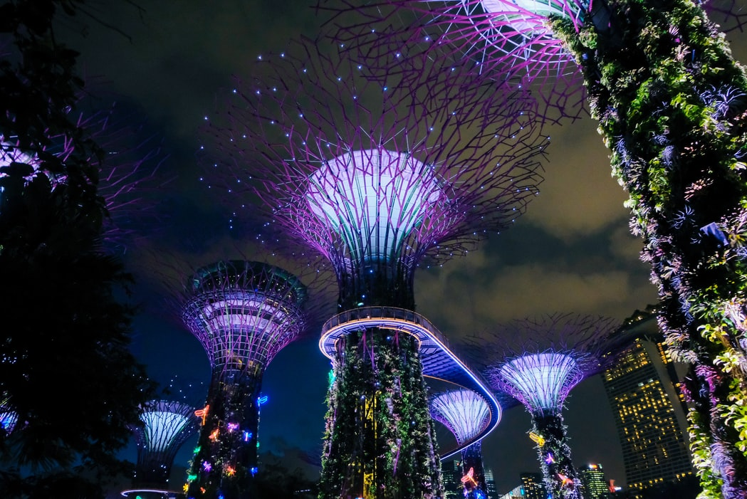 Reasons to visit Singapore with kids