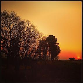 by Isaac De Jesus - Novices Only Landscapes ( sunshotz, snapsee, sunset_rv, sunset_hub, sunset_pics, super_shotz, sky_painters, sunsethunter, sunset_united, sunset_madness, sunshineaddicted, sunset_specialist, sunsetsunrise_photo, sunrise_sunsets_aroundworld )