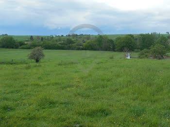 terrain à Attigny (08)