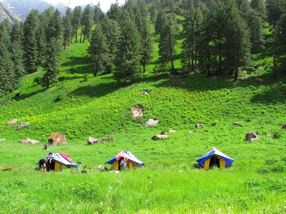 things-to-do-in-kullu-manali-Great_Himalayan_National_Park