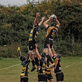 LRU 91 by Michael Moore - Sports & Fitness Rugby (  )