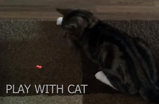 Super Laser Point for Cat 2017