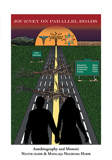 Journey on Parallel Roads cover