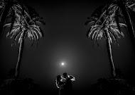 Hochzeitsfotograf Miguel Bolaños (bolaos). Foto vom 15.12.2017