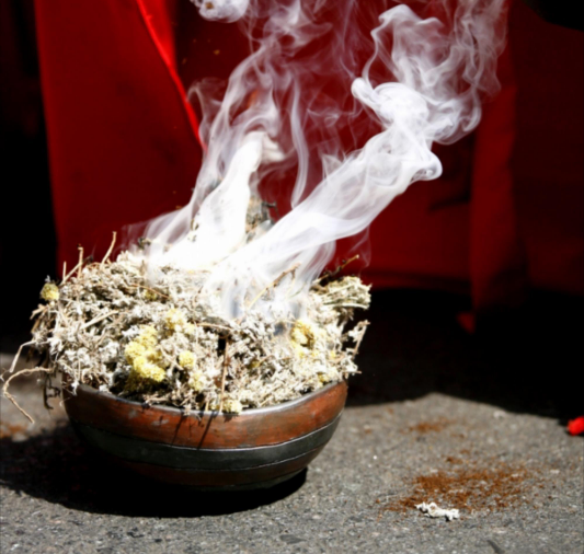 Let us regulate ourselves' say traditional healers
