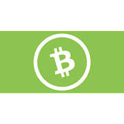 Bitcoin Cash (BCH) Pocket explorer PRO
