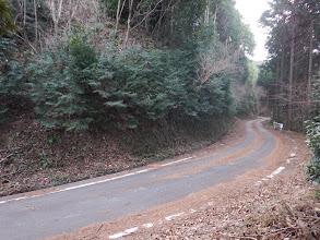 舗装林道に出合う