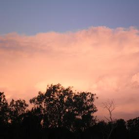 by Ashleigh Jane Schofield - Landscapes Sunsets & Sunrises