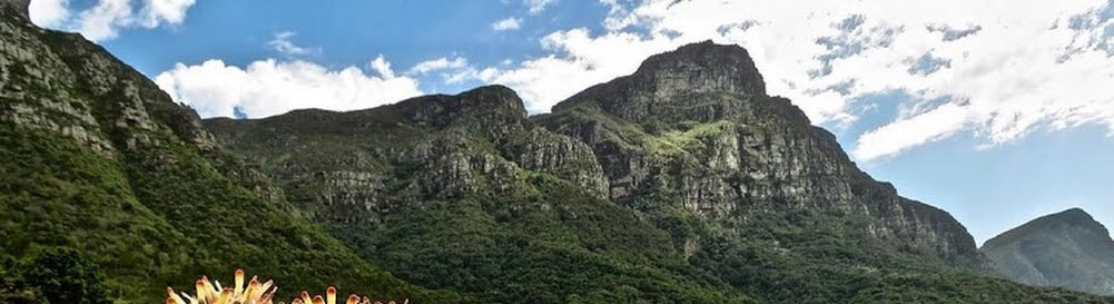 Kirstenbosch National Botanical Garden, Things to Do, Prices & More
