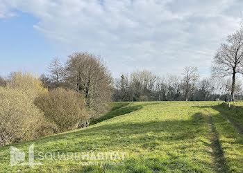 terrain à Saint-Georges-de-Reintembault (35)