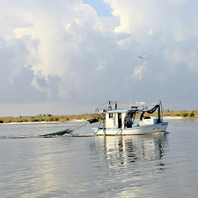 Biloxi Shrimp Boat by Angela Wescovich - Transportation Boats