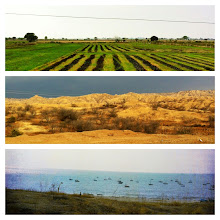 Photo: The three different landscapes of northern Peru on our bus trip:  farmland, desolate desert, ocean.