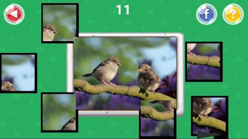 Xếp hình động vật screenshot 12