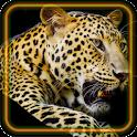 Leopard Jungle icon