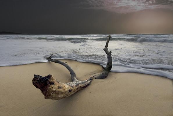 Ritorno dal mare di Mirko Macari Fotografia