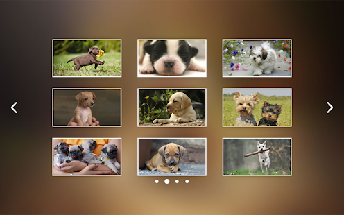Puppies Jigsaw Puzzle for Kids- screenshot thumbnail