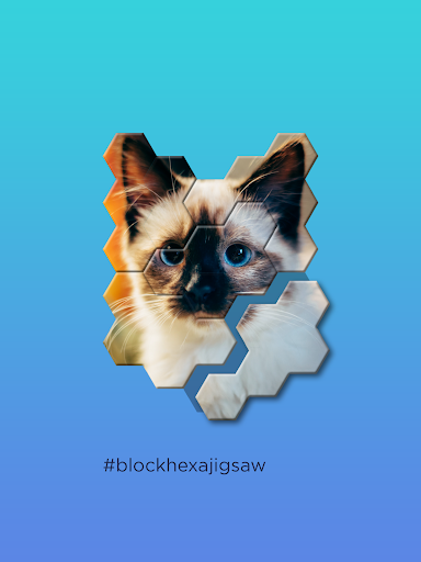 Block Hexa Jigsaw Puzzle screenshots 6