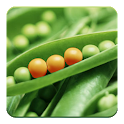 Food Additives icon