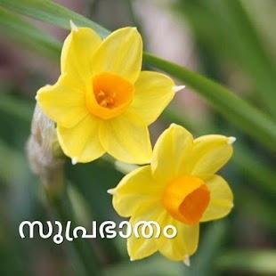 Morning & Night in Malayalam - náhled