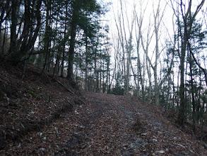 何とか林道に合流