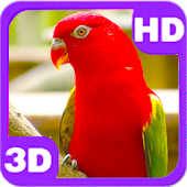 Cute Bright Red Parrot on Next Branch