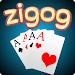 Zigog icon