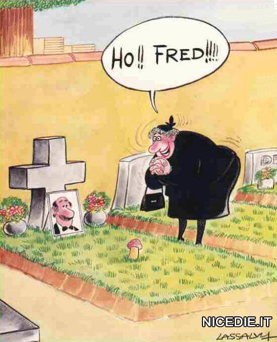 una vedova sulla tomba proprio in quel posto è cresciuto un funghetto